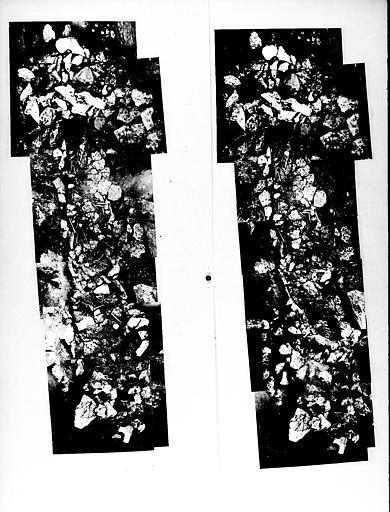 Fragments de squelette trouvés dans les fouilles