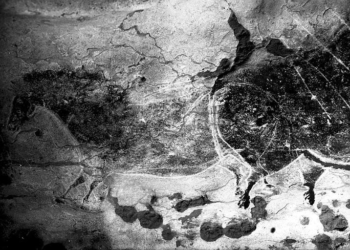 Nef côté gauche : cheval peint et gravé, M