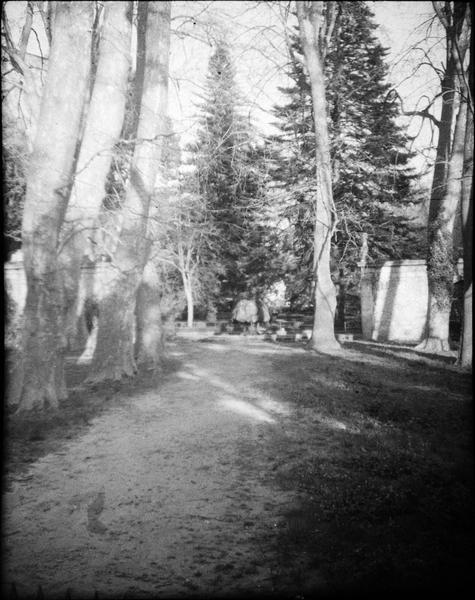Jardin : allée bordée d'arbres depuis la route du Château