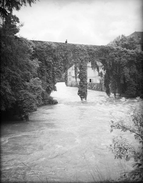 Pont de lierre sur le gave de Pau