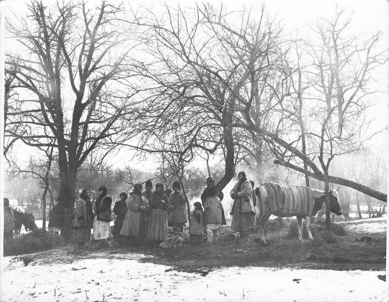 Ruthènes fugitifs en Bukovine