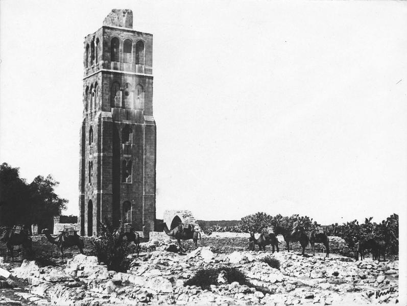 Convoi de chameaux en marche devant le clocher de Ramleh