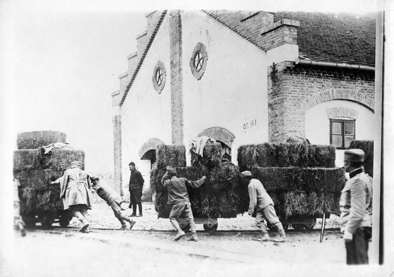 La guerre européenne. Prisonniers autrichiens occupés par les Serbes au transport des fourrages