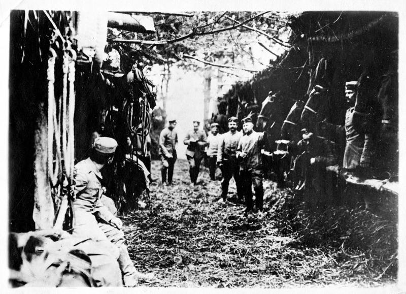 Sur le front. Dans l'Argonne. Abris construits par les cavaliers allemands pour rendre invisibles leurs montures