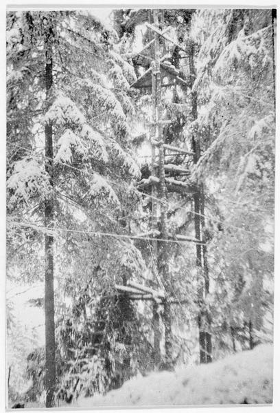 Front russe. Poste d'observation d'artillerie près de Riga (échelle haute)