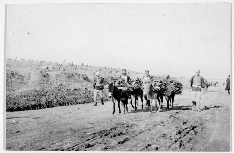 Paysans avec des ânes chargés de fagots de bois