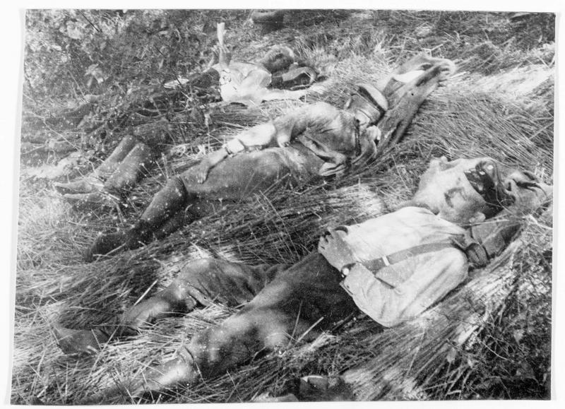 Près de Verdun, le repos dans les champs de blé