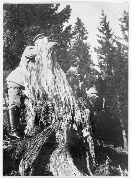 Soldats allemands en observation dans les Vosges. Poste d'observation derrière un arbre