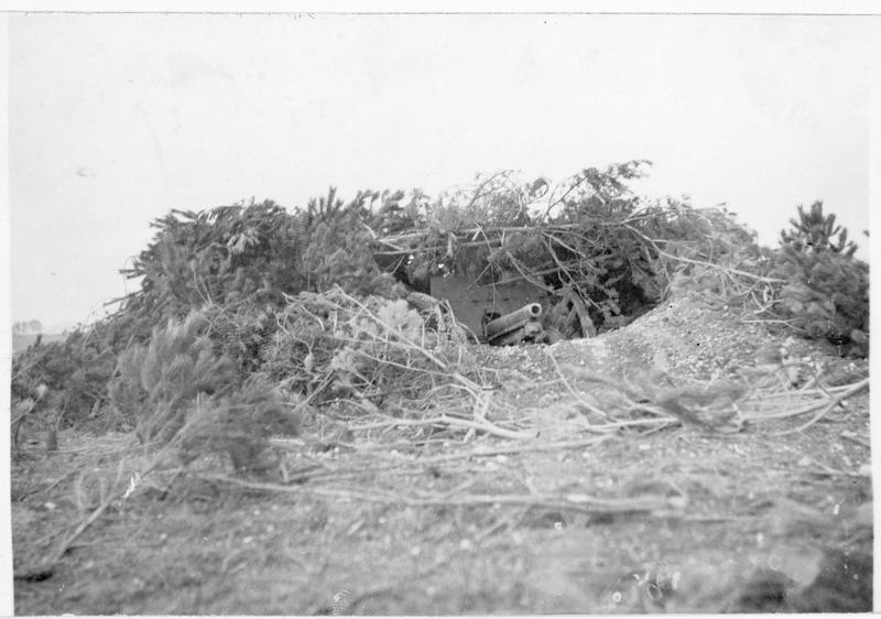 Canon allemand camouflé avec des branchages, caché de la vue des avions