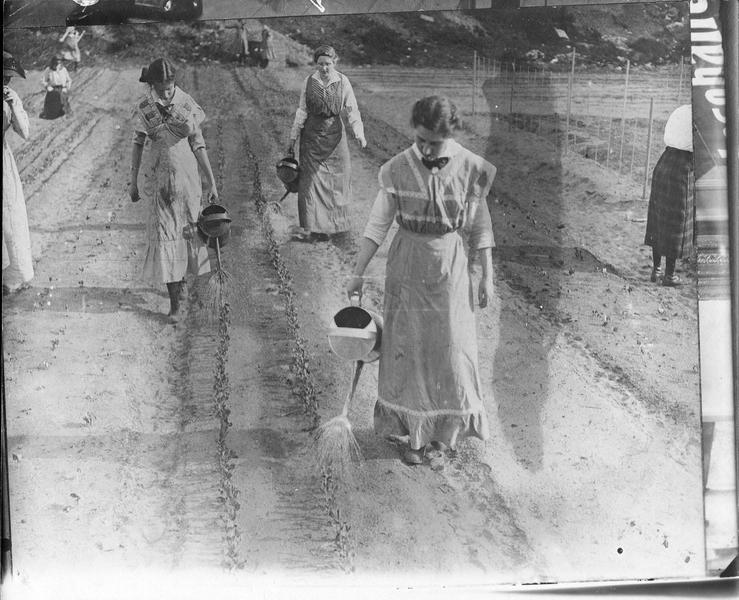 Près de Berlin. Arrosage des plantations. Transmis le 21 mai 1916