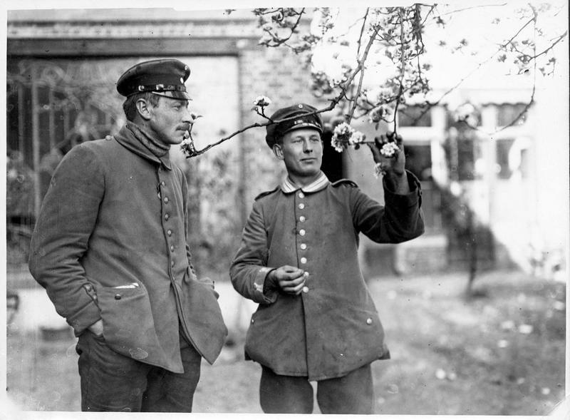 [Deux soldats allemands et arbre en fleurs]