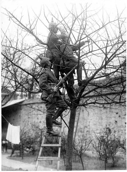 Une patrouille en reconnaissance. [Poste d'observation allemand dans un arbre]