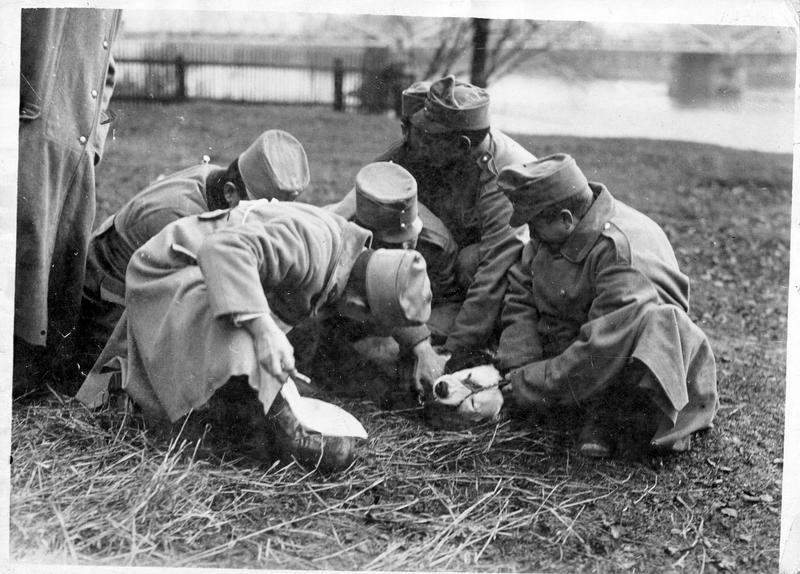 [Groupe de soldats allemands autour d'un chien blessé]