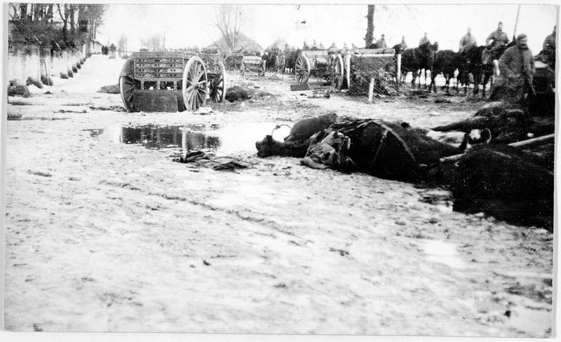 Champ de bataille de la vallée de la Duna (Danube) immédiatement après l'évacuation des Russes