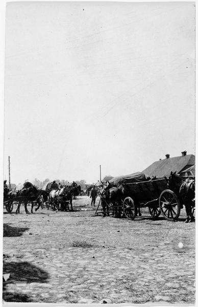 Convoi allemand de munitions en position derrière la ville de Pinsk
