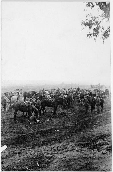 Cavalerie allemande et convoi de munitions, dans la campagne russe