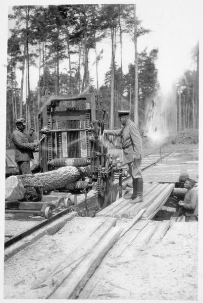 La coupe de troncs d'arbre avec une tronçonneuse, en Pologne russe