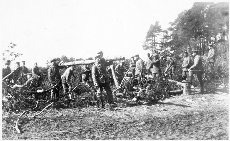 Soldats allemands établissant un chemin dans une forêt russe
