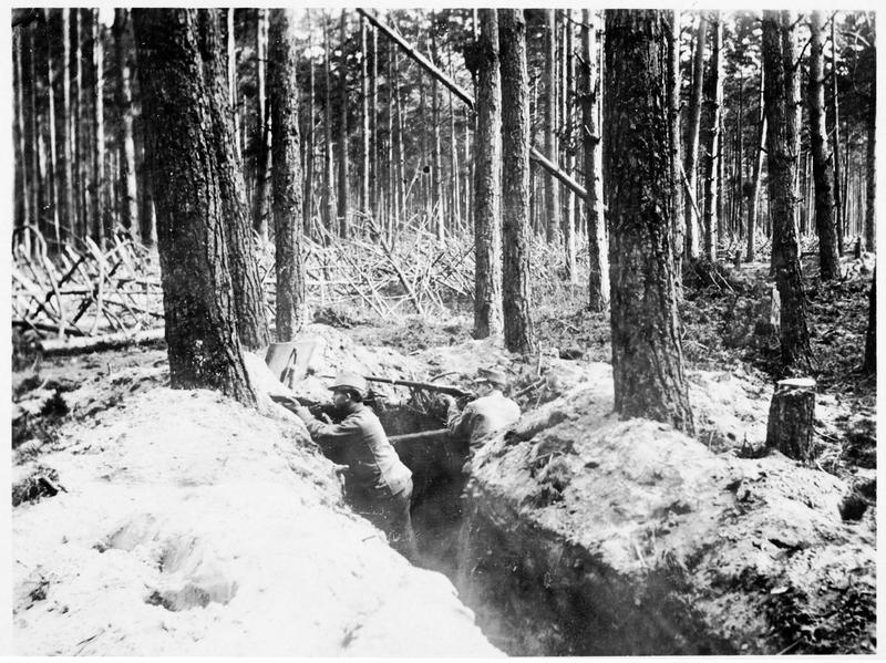 Tranchée autrichienne dans un sous-bois, avec des chevaux de frise