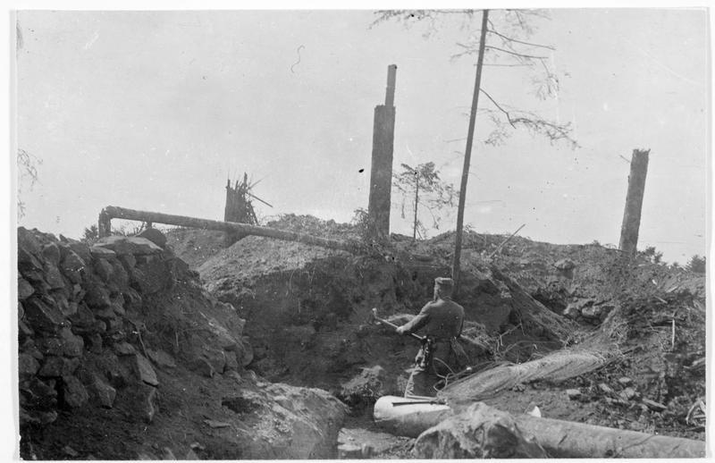 Tranchée française abandonnée, dans les Vosges