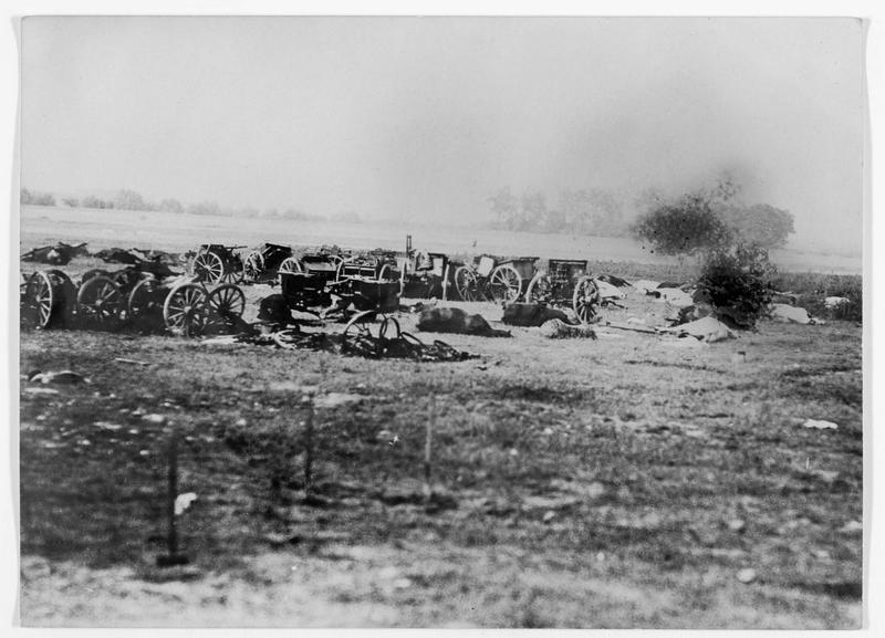 Campagne de Serbie. Artillerie serbe abandonnée et cadavres de chevaux