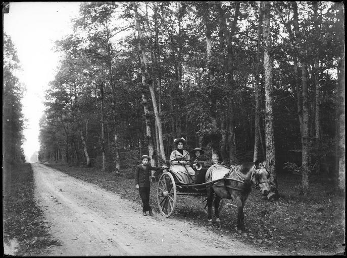 Portrait de sa famille : sa femme et ses deux fils, Robert et René, dans un attelage sur une route de campagne#