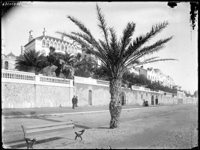 Palmier et promeneurs sur le boulevard du Midi