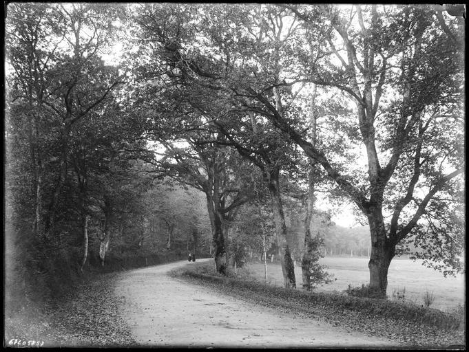 Personnes sur la route de Plélan-le-Grand