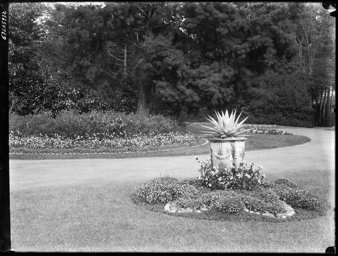 Parc : parterre de fleurs et cactus dans un vase