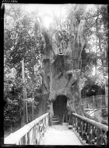 Parc : pont en bois vers un arbre creusé et sculpté