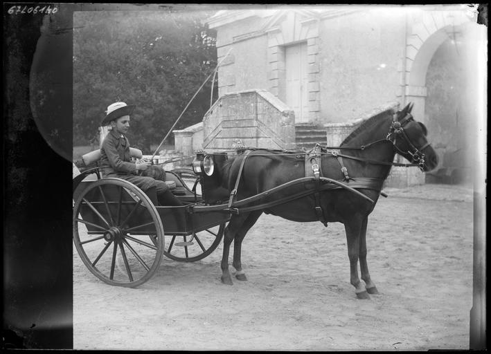 Le cheval Pompon attelé, et un garçonnet