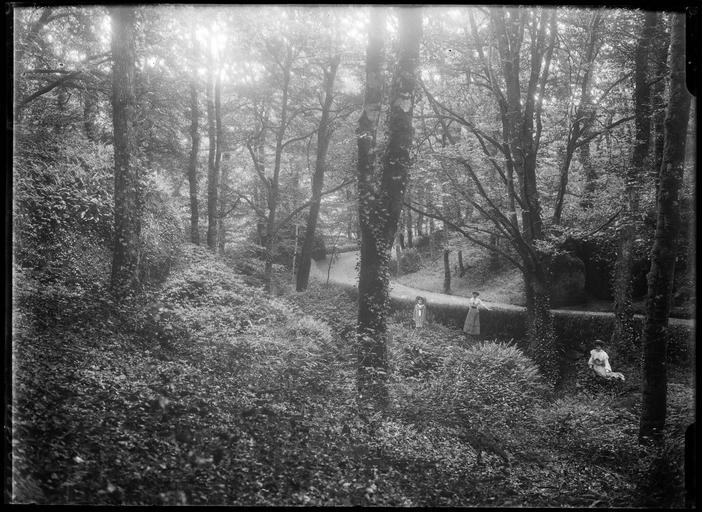 Personnages dans une forêt
