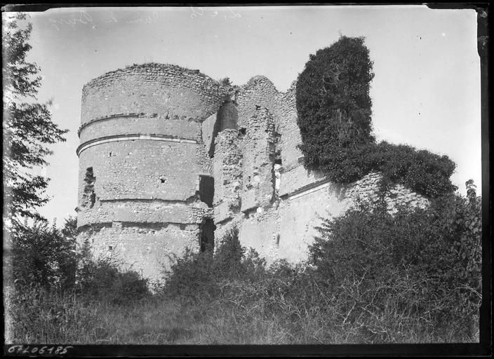 Vestiges : le donjon en ruine