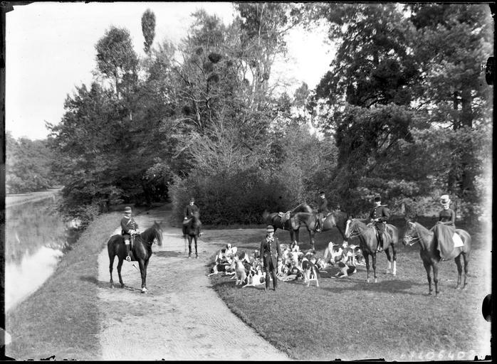 Parc : départ de chasse à courre, cavaliers et chiens