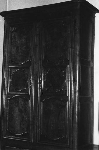 Armoire bourguignonne à deux vantaux, montants droits et pieds antérieurs galbés, ronce de noyer