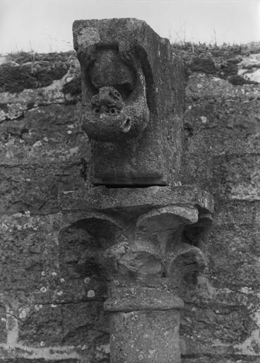 Colonnette : détail d'un chapiteau sculpté de feuilles stylisées, surmonté d'un animal fantastique suspendu tête en bas, pierre sculptée (détail)