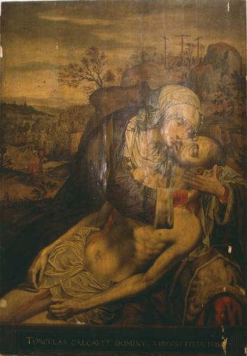 Tableau : Vierge de Pitié, huile sur bois ; avant restauration