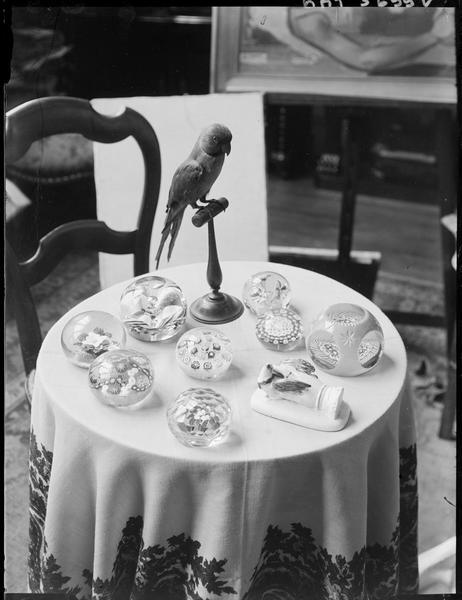 [Les boules de verre] ; Perroquet et boules de verre chez André Lhote