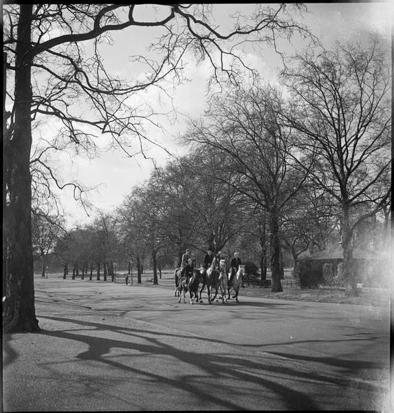 Vue sur le parc : des cavaliers dans l'une des allées