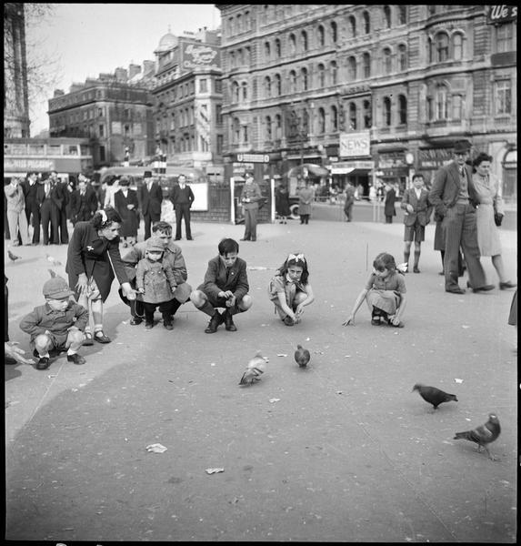 Des enfants accroupis près des pigeons