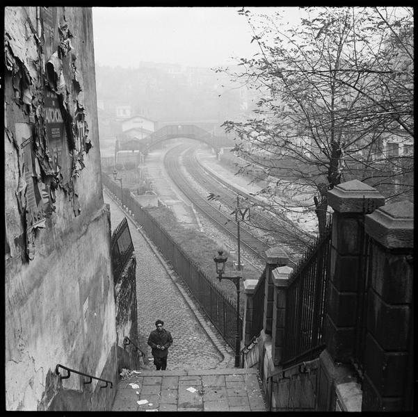Vue sur les rails saisis dans le brouillard