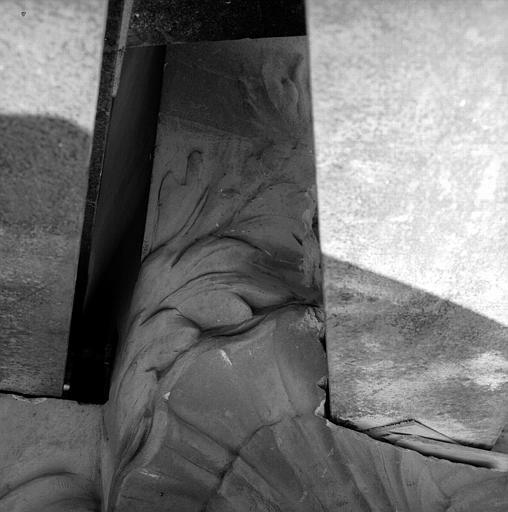 Détail de coquille sculptée