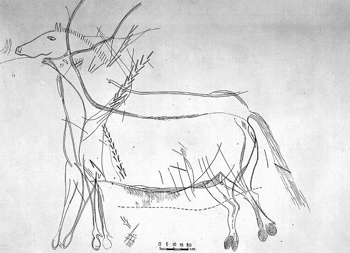 Relevé : Grand cheval fig. 1.2. de l'abside