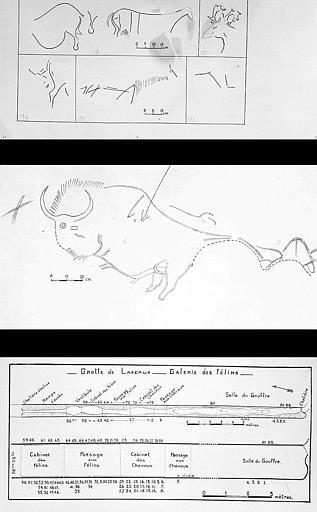 Deux pages de relevés : N° 174 à 178, 1 à 3 et plan avec numérotation de la galerie des félins