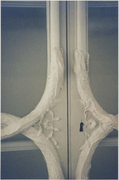 Lambris de revêtement (boiseries) de l'ancien cabinet d'histoire naturelle du Jardin du Roi dit cabinet de Buffon (provenant du cabinet de Bonnier de la Mosson à l'hôtel du Lude, rue Saint-Dominique), détail