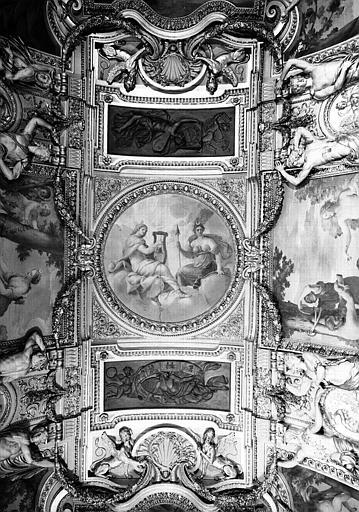 Appartements d'Anne d'Autriche, Salle des Saisons : Vue d'ensemble du plafond