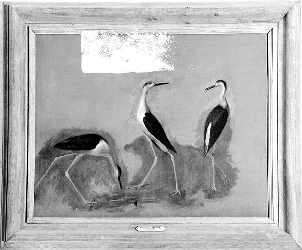 Peinture sur toile : Trois échassiers