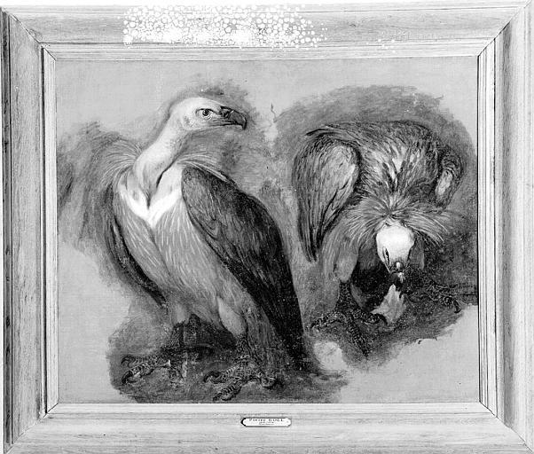 Peinture sur toile : Deux vautours