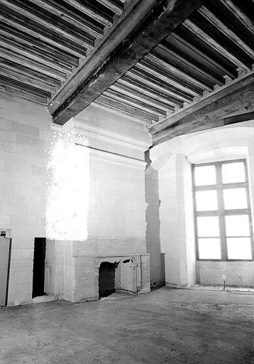 Salle de la tour François 1er : cheminée et plafond