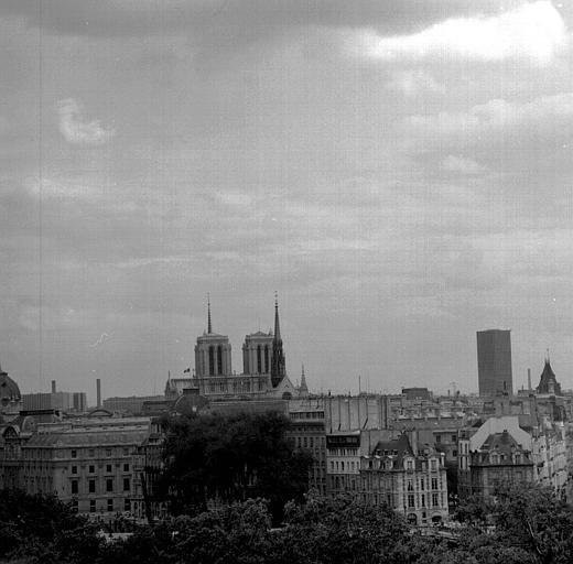 Vue panoramique prise des toits du Louvre : La Cité, Notre-Dame, La Tour Montparnasse